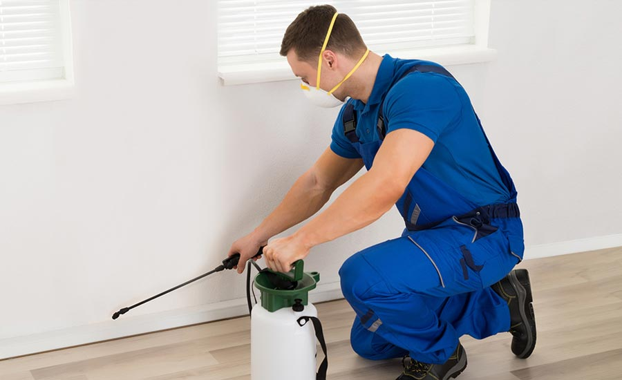 Jani-King is the King of all Services, Pest Control is just one service that Jani-King provides to it's commercial clients.